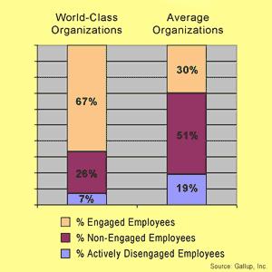 Employee Engagement Study